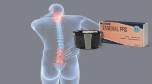 Prezzo e dove acquistare Taneral Pro?