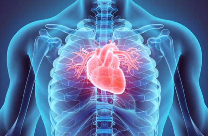 Dove acquistare Cardio Active   - Cardio Active con consegna gratuita