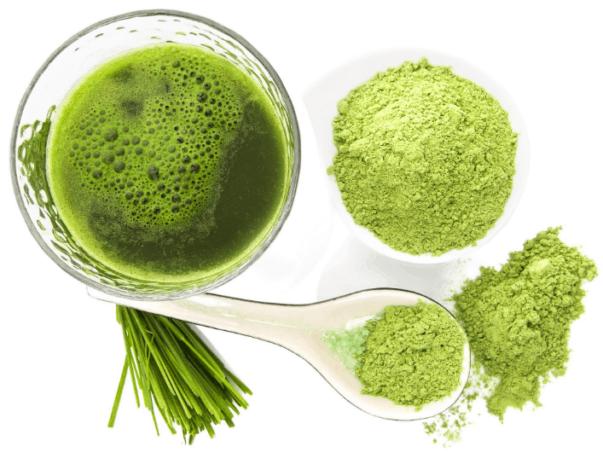 Quali sono gli ingredienti di Green Barley Plus?